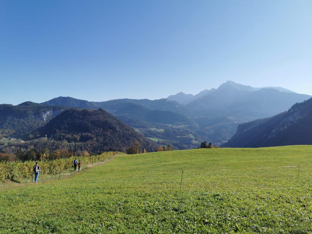 Von Ettenberg mit diesem Bergblick zur Kugelmühle wandern