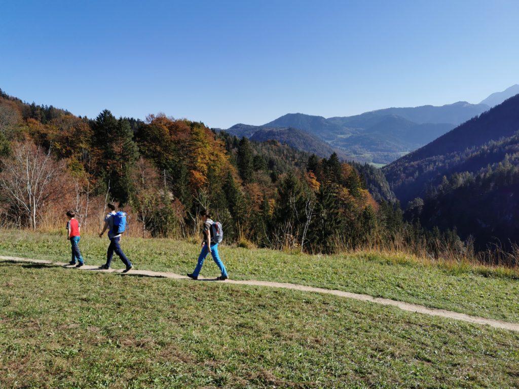 Herbstwanderung - mit Laubfärbung in der Sonne wandern
