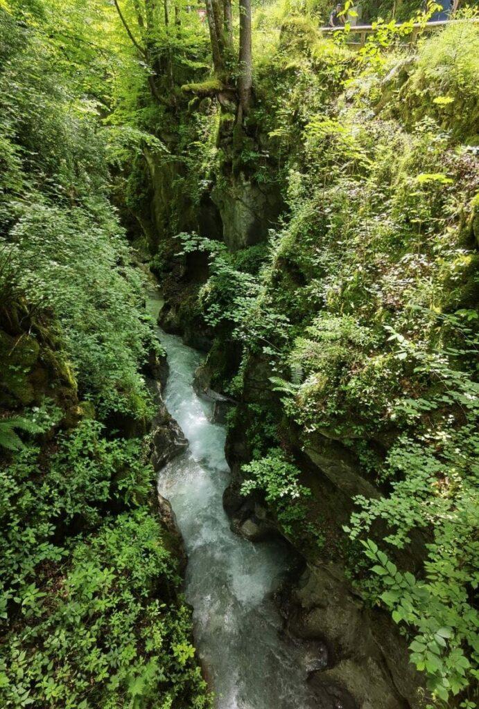 Blick in die Marxenklamm im Zauberwald Ramsau